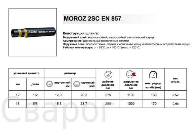 moroz2sc-1